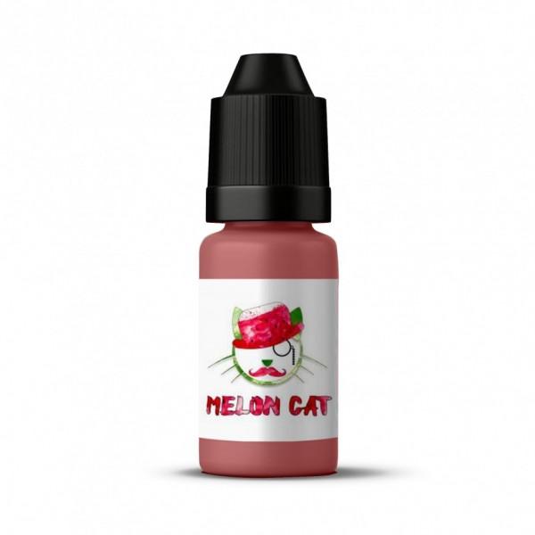 Copy Cat - Melon Cat