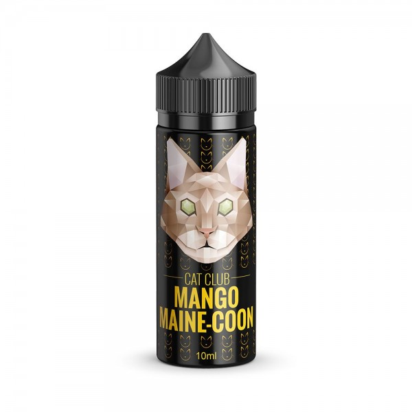 Mango Maine-Coon by Cat Club