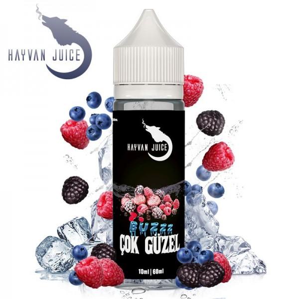 Cok Güzel Aroma by Hayvan Juice
